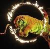 Цирки в Кадуе